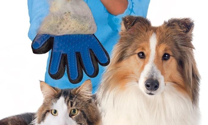 Rokavica macek pes