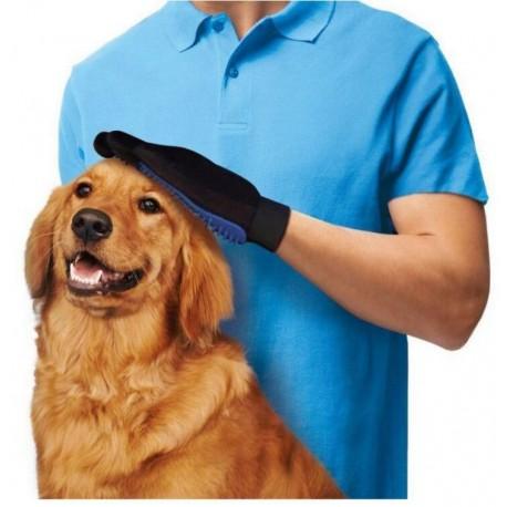 rokavica pes stoječi